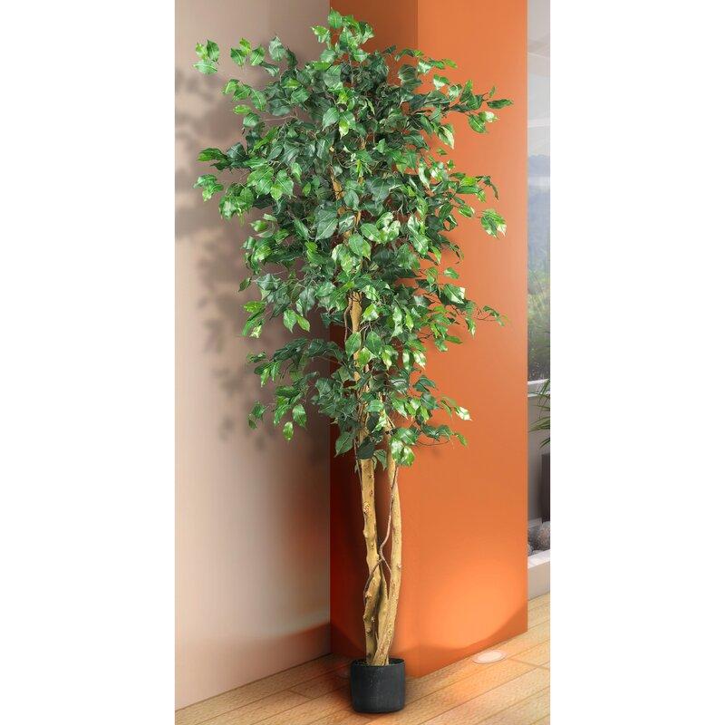 Artificial Ficus Tree in Planter
