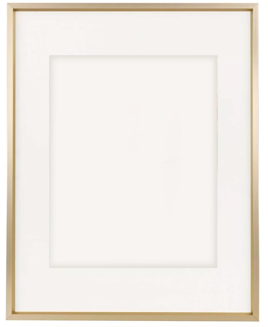 Wayfair Basics® Aluminum Thin-Border Design Picture Frame