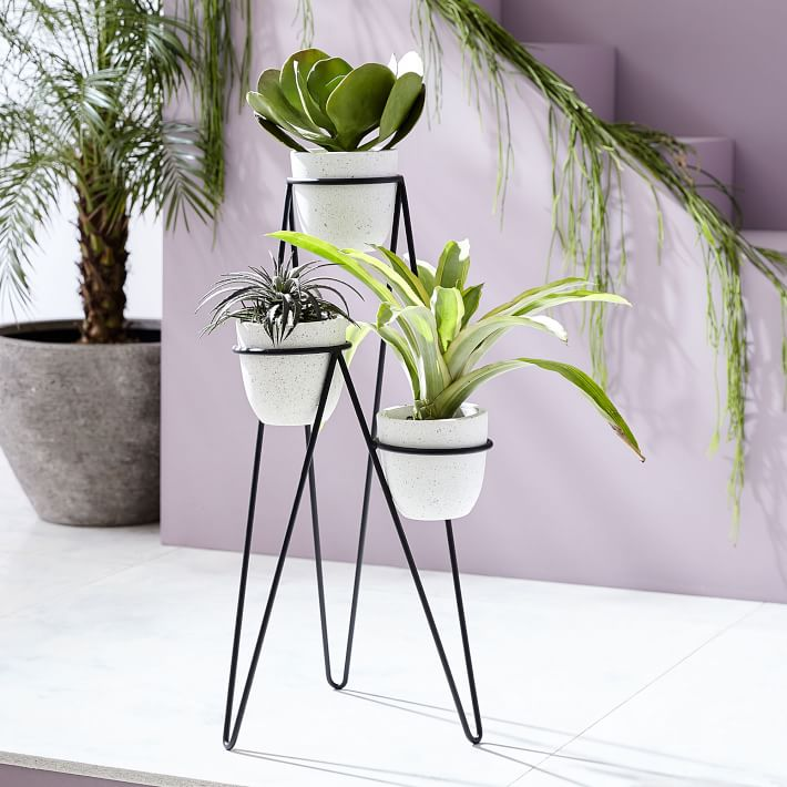 Iris Planter + Chevron Stand, Triple
