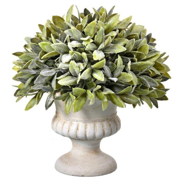 Regency Flocked Sage Foliage Topiary in Urn