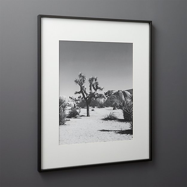 Gallery Black Frame with White Mat 16 x 20