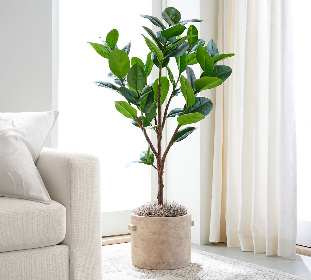 """Faux Potted Rubber Tree, 51.5""""H"""