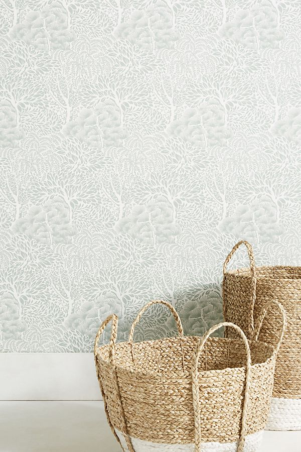 Miyuki Wallpaper