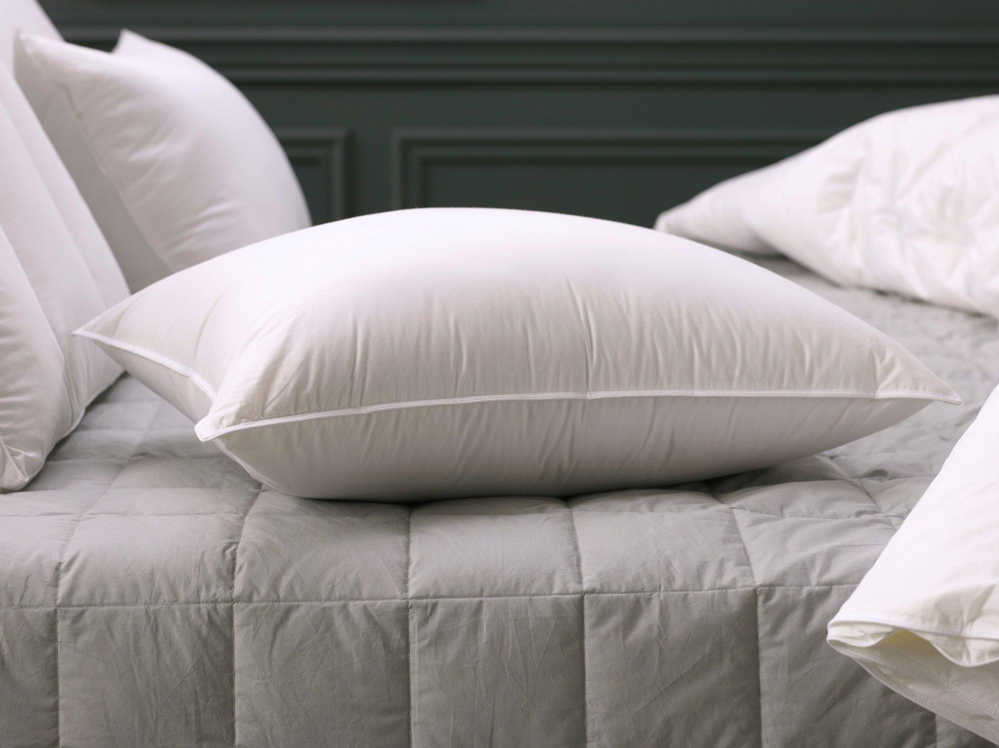 "20"" x 20"" Down Alternative Decorative Pillow Insert"