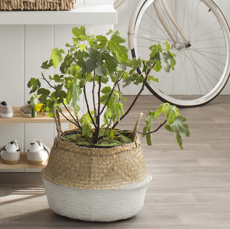 Seagrass Basket with Handles-natural