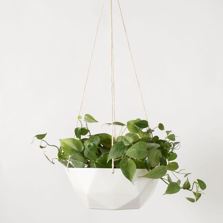 Hanging Planter, 2V Ivory