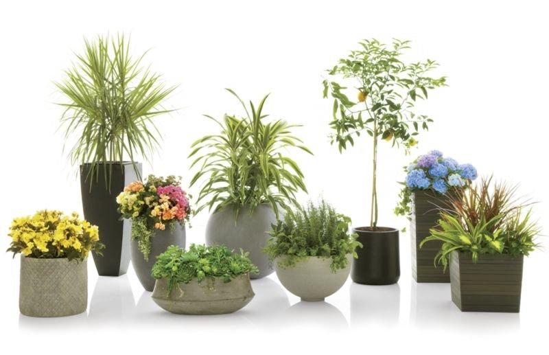 """Saabira Fiberstone 23.25"""" Tall Planter"""