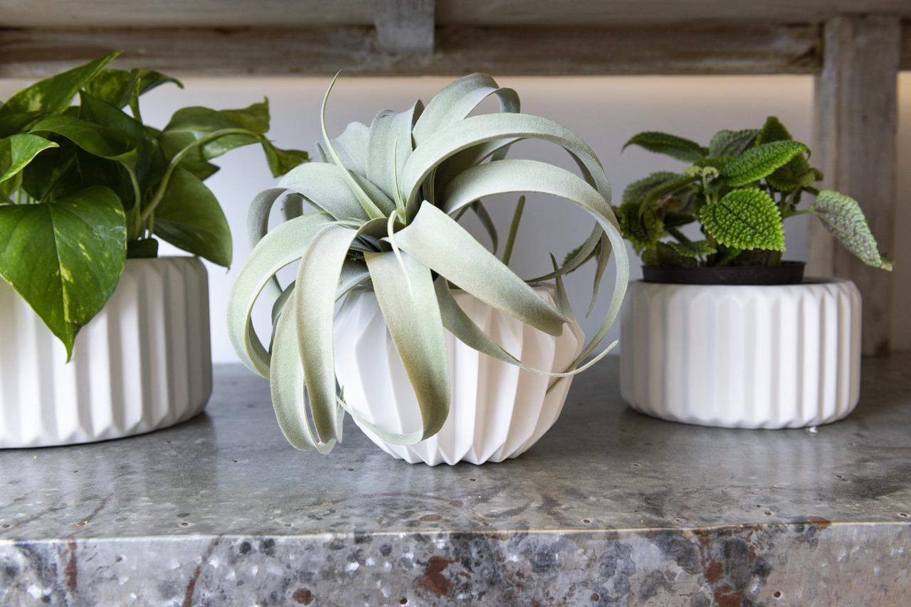 Signy Stoneware Vases, Set of 2