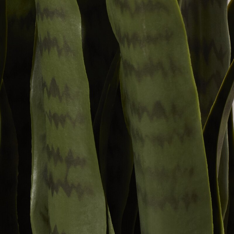 "35"" Artificial Foliage Plant in Pot"
