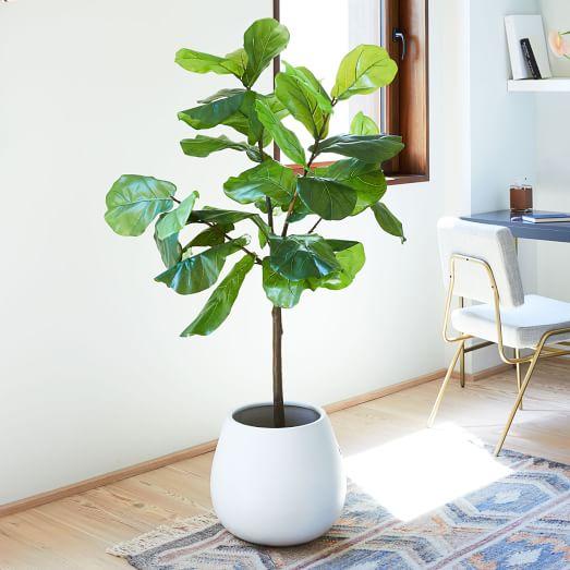 Faux Fiddle Leaf Fig Plant