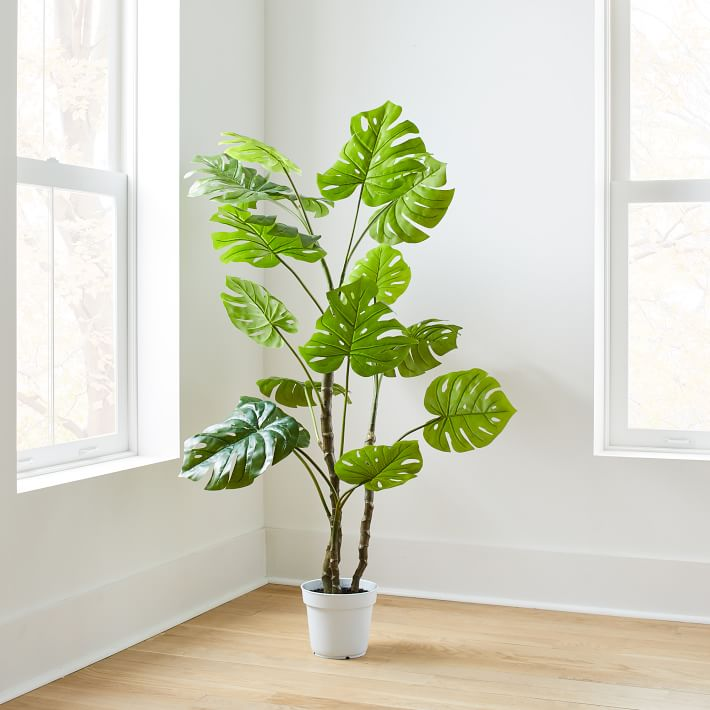 Faux Potted Monstera