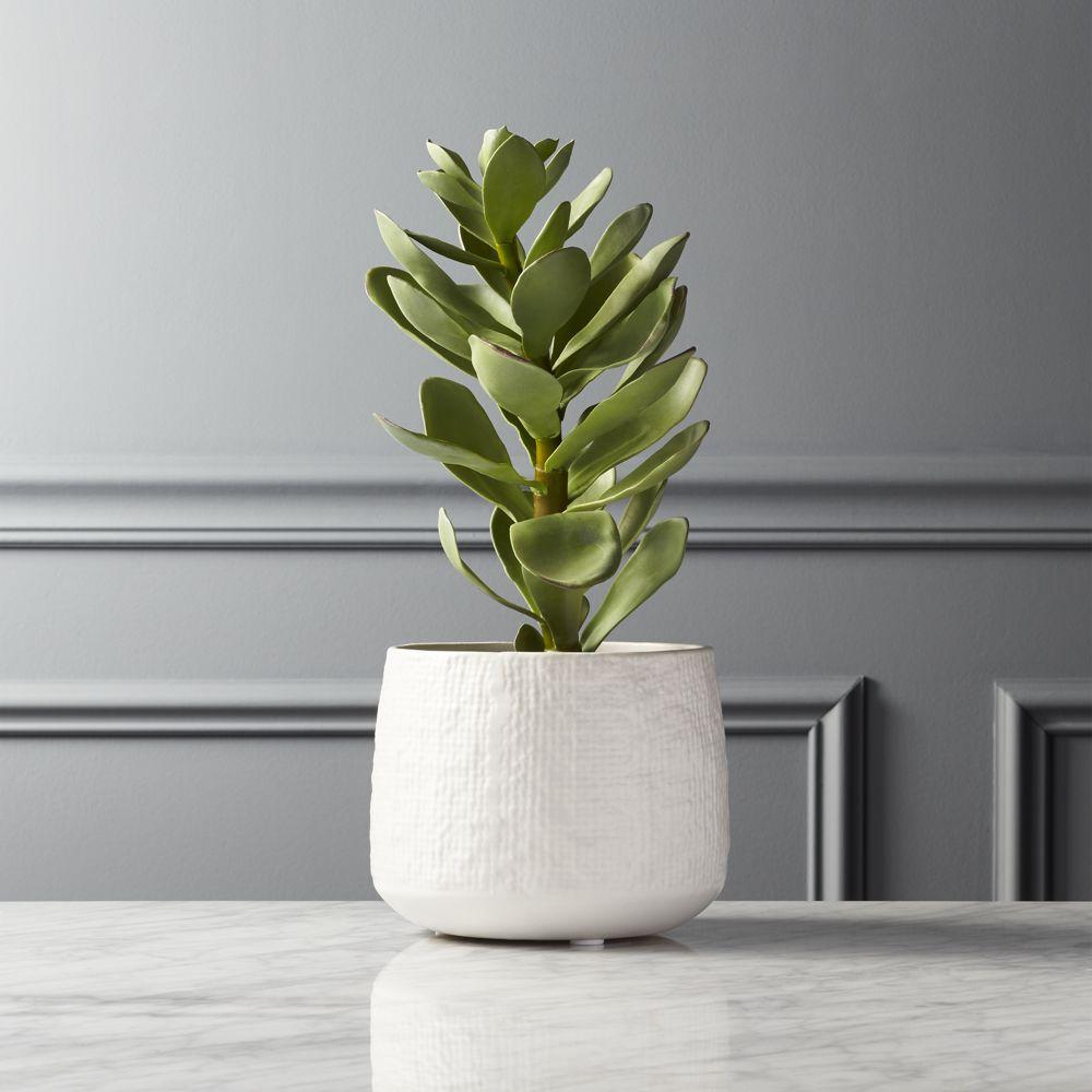 """Potted Faux Succulent White Pot 14"""""""