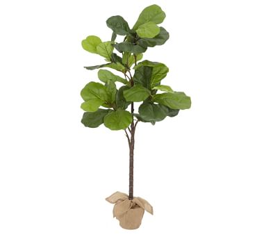 """Faux Potted Fiddle Leaf Tree, Large - 6'9""""ft"""