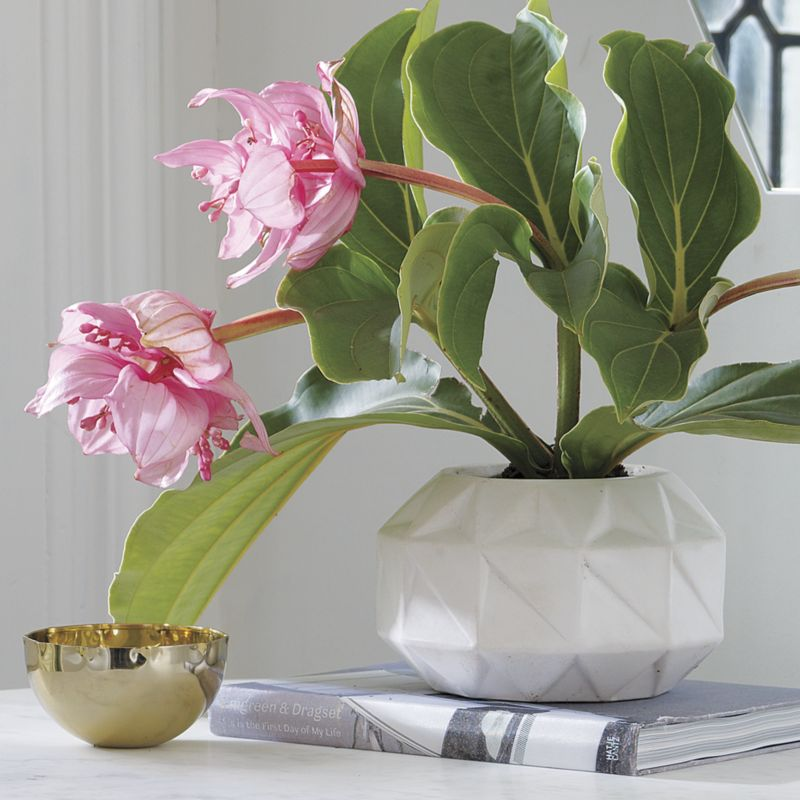 bennie low vase-planter