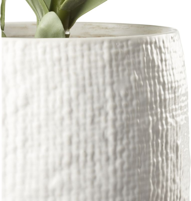 Potted Faux Succulent White Pot