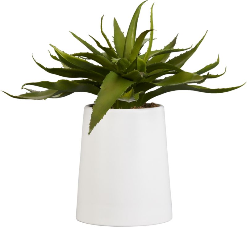 potted faux aloe