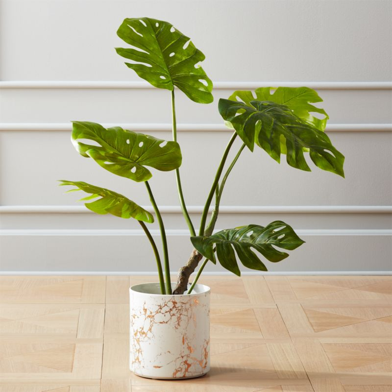 Faux Potted Monstera Plant (Estimated in early September)