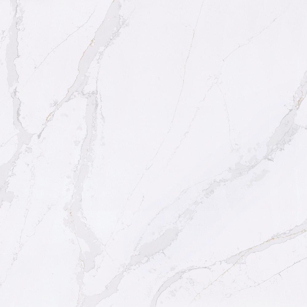 4 in. x 8 in. Quartz Countertop Sample in Calacatta Gold, High Gloss