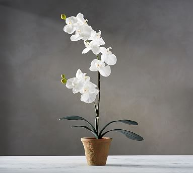 """Faux Potted Orchid, 21"""""""
