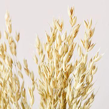 Dried Avena