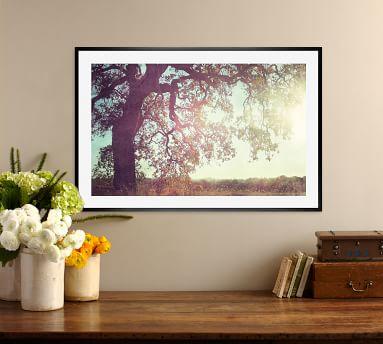 "Sunny Oak by Lupen Grainne, 42 x 28"", Ridged Distressed, Black, No Mat"