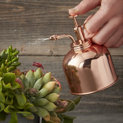 Copper Plant Mister