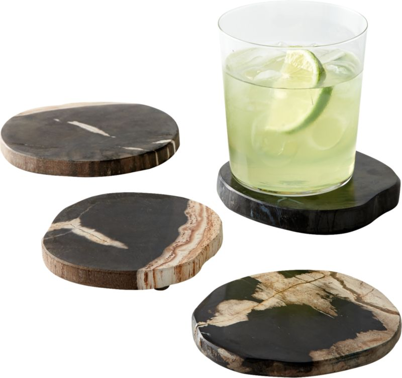 Ring Petrified Wood Coasters Set of 4