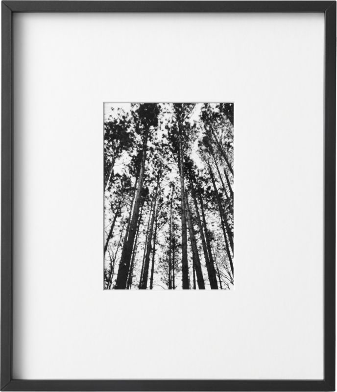 Gallery Black Frame with White Mat 5x7