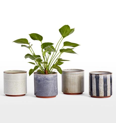 Whitney Medium Planter