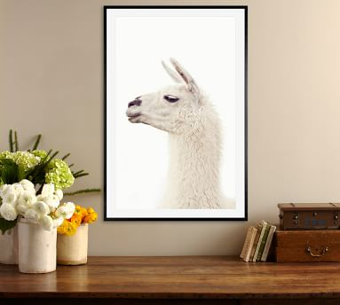 "Llama by Jennifer Meyers, 28 x 42"", Wood Gallery, Black, Mat"