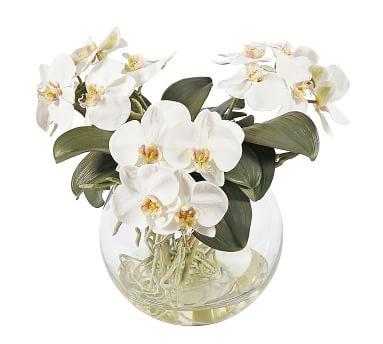 Faux Orchid Phalaenopsis Arrangement in Pot