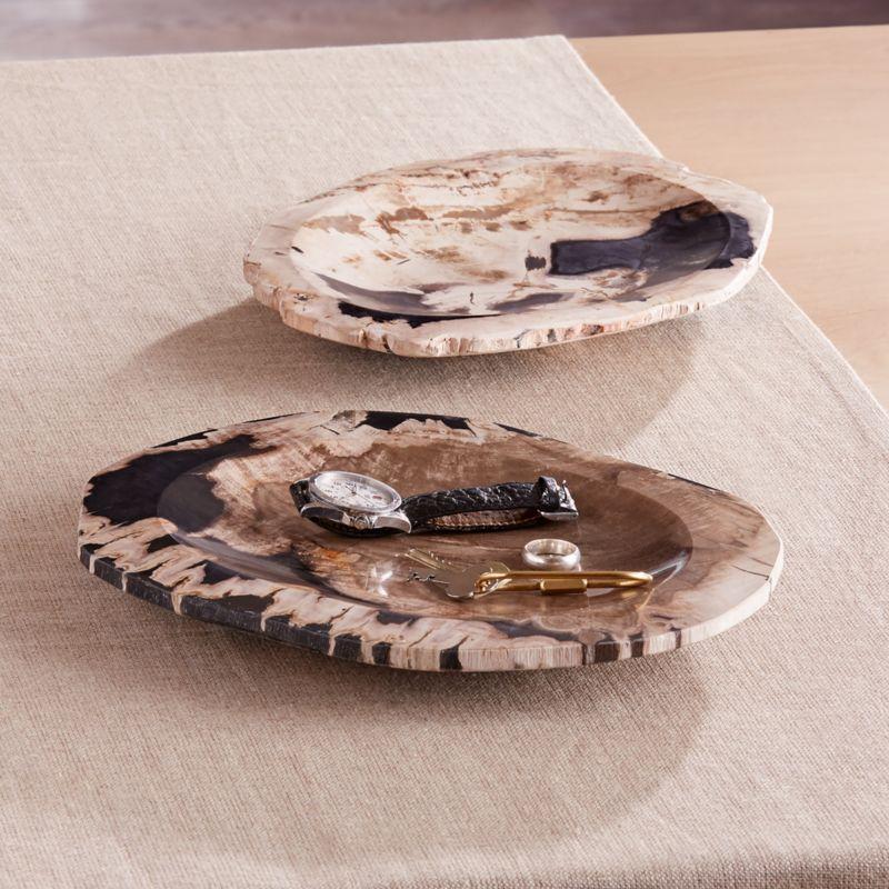 Petrified Wood Catch-All Tray