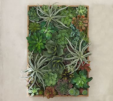 Succulent Wall, Green - Large