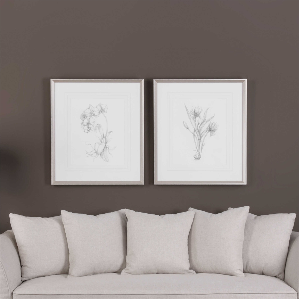 """Botanical Sketches, S/2 - 28"""" x 32"""" - Silver/Taupe Frame with Mat"""