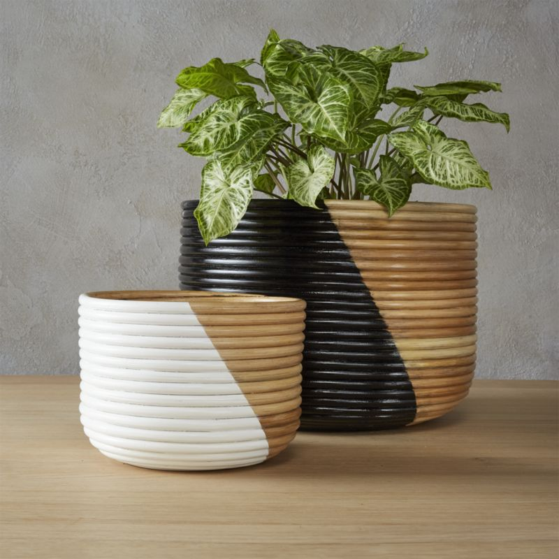 basket small white planter