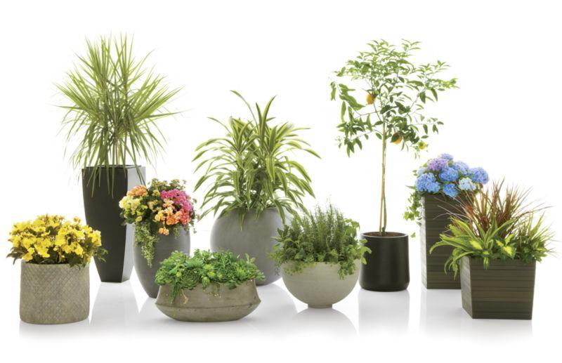 """Saabira Fiberstone 15.5"""" Tall Planter"""
