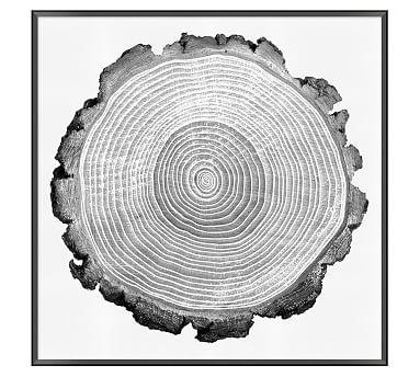 "Tree Lines Framed Print, 33 x 33"""