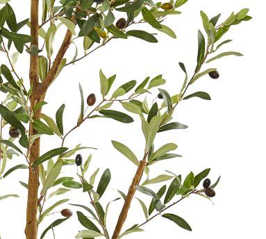 Faux Olive Tree, 6.5'