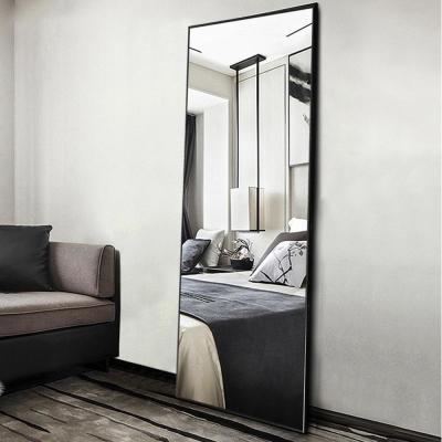Neu-Type Elegant/Modern Large Full-length mirror/Floor Mirror Standing Leaning or Hanging In Living Room