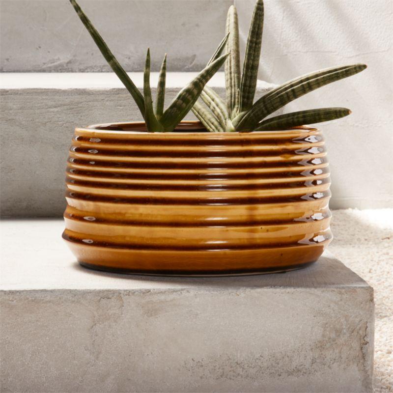 Serra Succulent Planter