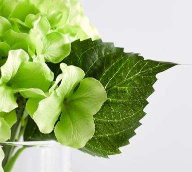 "Faux Green Hydrangea Flower Arrangement, 10.5""H"