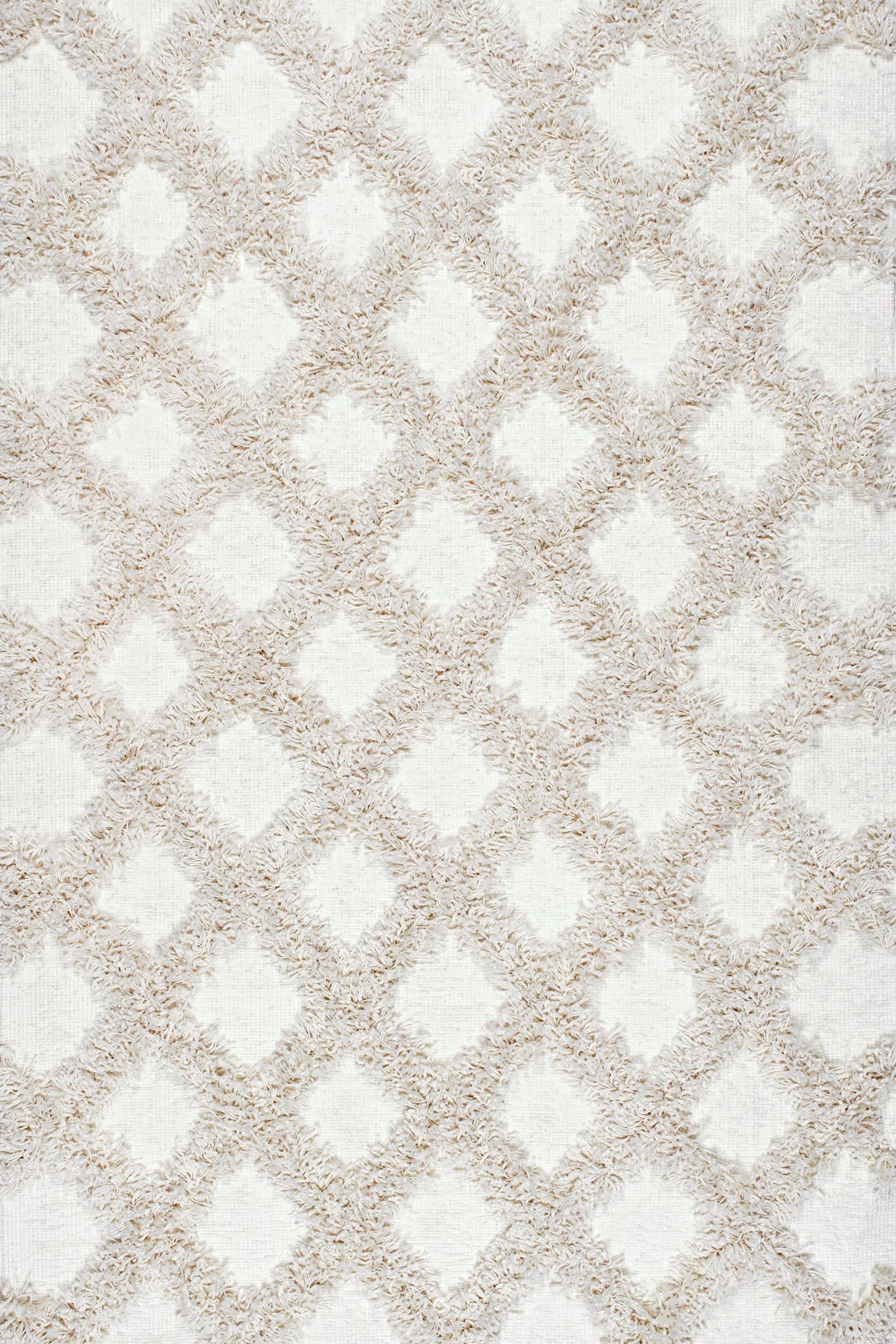 Francene Diamond Trellis Shaggy Area Rug
