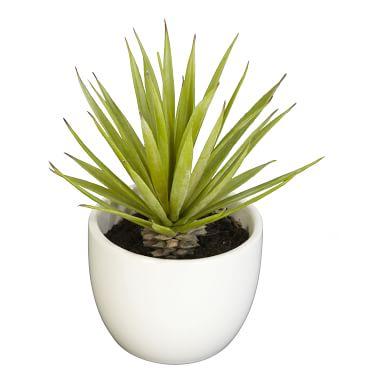 Faux Potted Southwest Plants, Set of 3