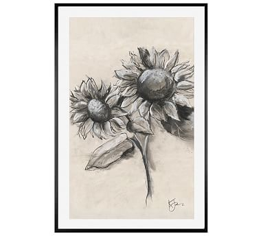 Charcoal Sunflower Sketch With Stem 28 X 42 Wood Gallery Black Mat Pottery Barn