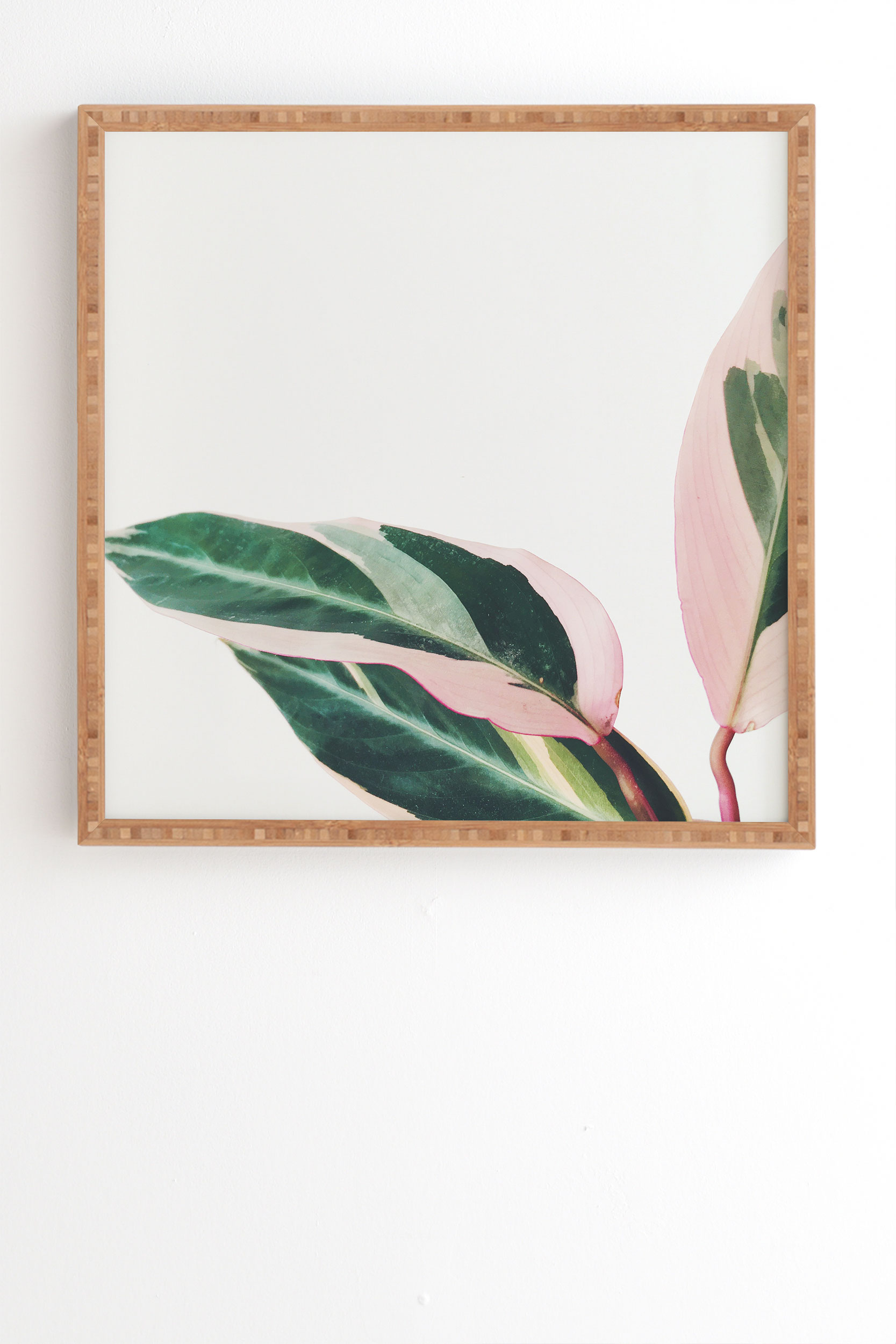 """Pink Leaves Ii by Cassia Beck - Framed Wall Art Bamboo 19"""" x 22.4"""""""