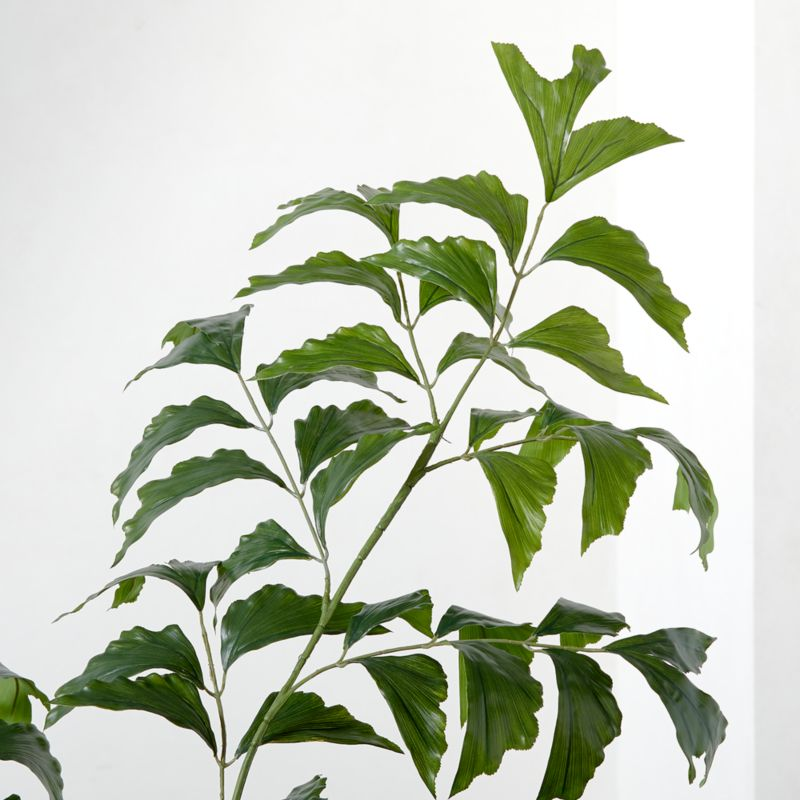 Faux Fishtail Palm Tree