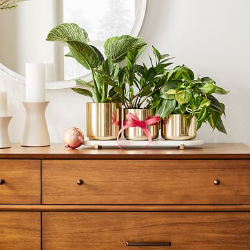 Calluna Planter Set With Pill Tray, Antique Brass & Marble, Set of 3