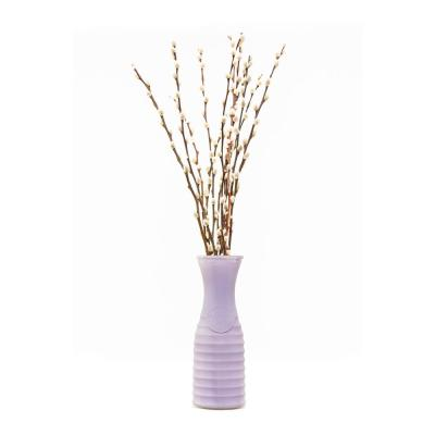 GARDEN STATE GROWERS 10 in. Willow Creations Pussy Willow Assorted Mix Salix Caprea Plant in Purple Vase