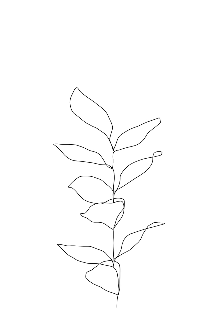 Plant One Line Drawing Illustration - Kay Framed Art Print by The Colour Study - Conservation Pecan - MEDIUM (Gallery)-20x26