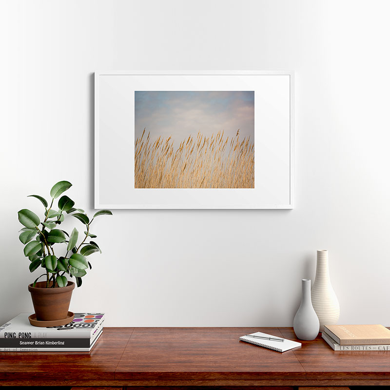 "Nantucket Gold by Ann Hudec - Modern Framed Art Print White 24"" x 36"""